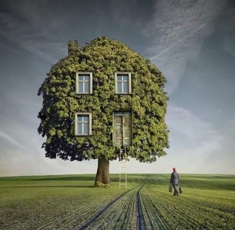 L'arbre maison surréaliste photo de l'artiste Darius Zklimczak