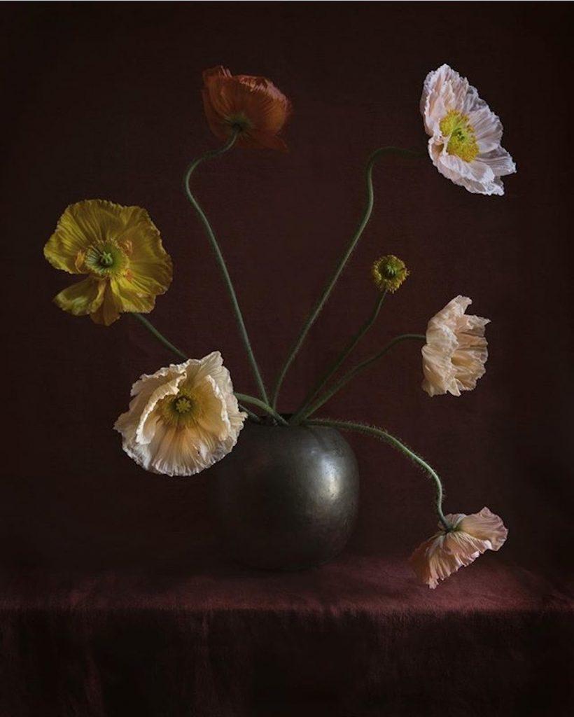 Pavots composition Studio Ariel Dearie Flowers © Copyright Ariel Dearie Flowers