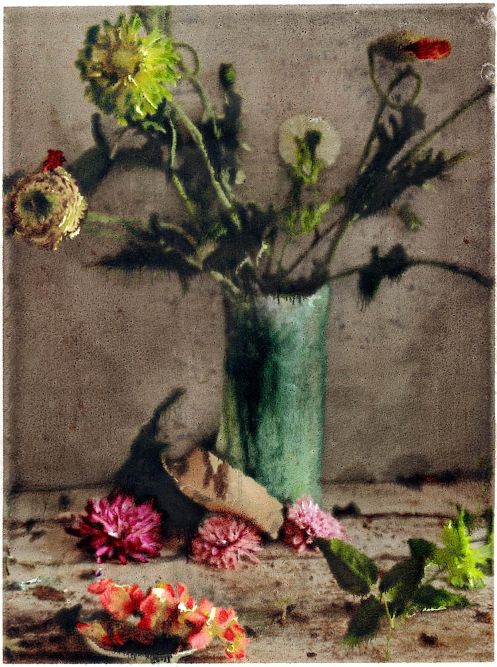 Peinture, photographie de Martyn Thompson